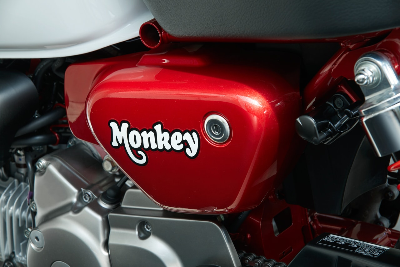 2019 HONDA MONKEY & SUPER CUB C125 COME TO U.S ...